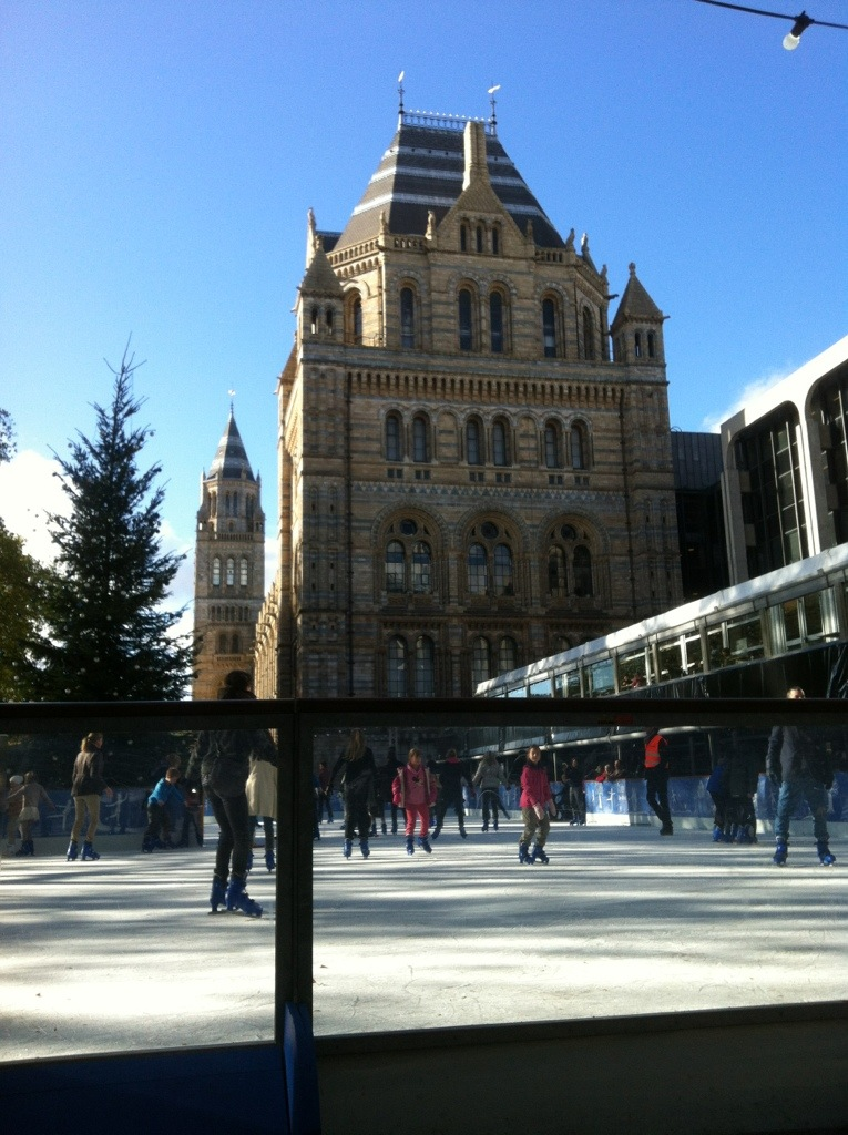 Natural History Museum, London, Ice Rink